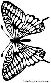 butterfly coloring pages butterfly coloring page 29 doodle art pinterest butterfly