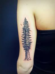 58 coolest tree tattoos designs and ideas tattoos me tree