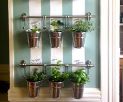hanging herb garden indoor gardening ideas