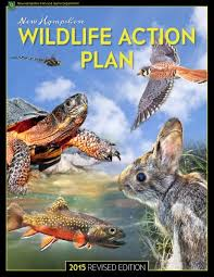 New Hampshire wildlife images You did it nh 39 s wildlife action plan revised taking action jpeg