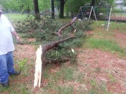 so this took down a power line in our backyard pics