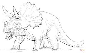 triceratop dinosaur coloring page free printable coloring pages