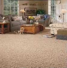 Carpet In Living Room by Living Room Carpet Home Design Ideas