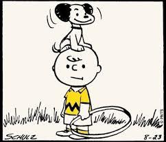 25 peanuts cartoon ideas snoopy snoopy