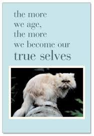 Cat Birthday Cards Grumpy Cat Birthday Card Cardthartic Com