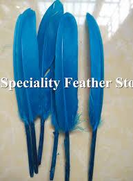 high quality mallard duck feather buy cheap mallard duck feather