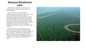 native plants in the amazon rainforest the amazon rainforest ppt video online download