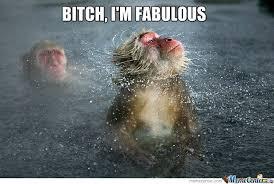 Funny Monkey Memes - fabulous monkey by moguai meme center