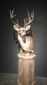 Deer Pedestal Pedestal Mounts Wildlife Artistry Llc