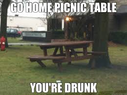 Bear At Picnic Table Meme - go home picnic table you re drunk drunk picnic table quickmeme