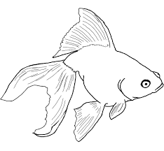 fish coloring book pages ocean life coloring page coloring pages