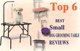 dog grooming tables for small dogs top 6 best small dog grooming table reviews best top care with dogs