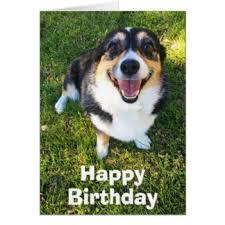 australian shepherd happy birthday happy birthday in welsh cards u0026 invitations zazzle co uk