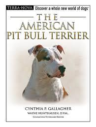 american pit bull terrier registry the american pit bull terrier terra nova cynthia p gallagher