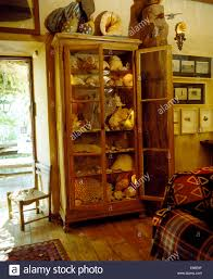 Glass Front Living Room Cabinets Collection Of Large Seashells In Glass Front Cupboard In