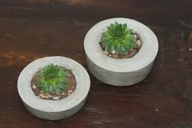 hand crafted concrete succulent planter set of 2 succulent