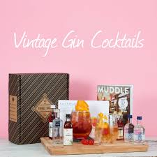 vintage cocktail vintage cocktail gin set by tipple box notonthehighstreet com