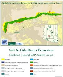 Map Of Yuma Arizona by Lower Salt And Gila Rivers Ecosystem Arizona Important