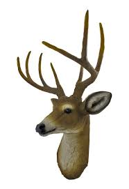 buck deer head bust hanging wall mount home decor collection