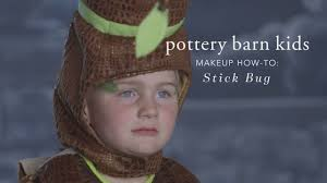fun halloween makeup tutorial stick bug costume for pottery barn