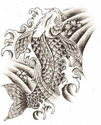 Meaning Of Koi - 18 best koi fish drawings images on fish