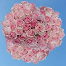 global roses get soft pink roses lowest prices global