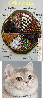 Cat Heavy Breathing Meme - cat memes cookie pizza me too heavy breathing lol k funny