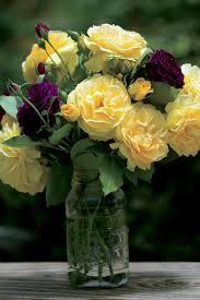 Putting Roses In A Vase Caring For Roses A Beginner U0027s Rose Growing Guide Garden Design