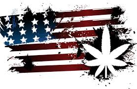Colorado Flag Marijuana Yes You Can Get Fired For Smoking Pot In Colorado
