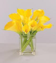yellow calla yellow flower arrangements yellow inspiration