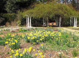 Virginia Botanical Gardens Norfolk Va Norfolk Botanical Gardens Donna L Watkins The