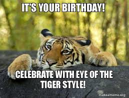 Eye Of The Tiger Meme - it s your birthday celebrate with eye of the tiger style