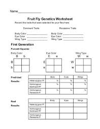 dihybrid practice worksheet