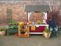 allotments gallery elford hall garden project