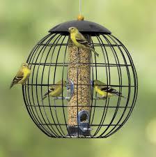 gardman bird feeders accessories u2026 pinteres u2026