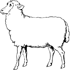 sheep picture free download clip art free clip art on