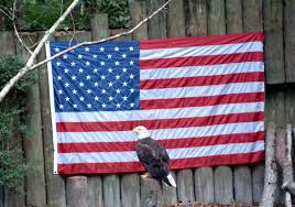 Is Today Flag Day Memorial Day Fun Facts Hoboken Happy Hours