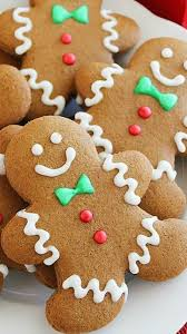 The Decorated Cookie Company Best 25 Gingerbread Cookies Ideas On Pinterest Gingerbread