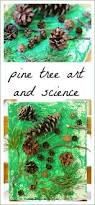 collaborative pine tree art project for kids