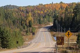 fall colour report algonquin provincial park friends