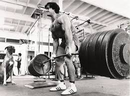 Bench Squat Deadlift 5 Reasons Why You Should Squat And Deadlift Heavy Rebel Performance