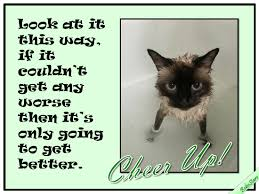 can only get better free cheer up ecards greeting cards 123
