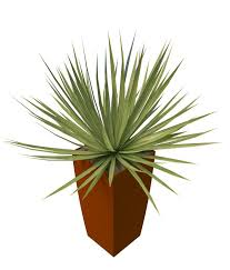 potted grass plants 3d model 3ds max files free