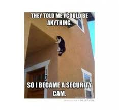 I Became A Cloud Meme - 10 amusing security memes security sales integration