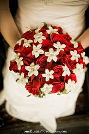 knoxville florists 31 best flowers images on roses bridal