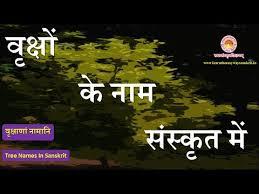 learn the easy way sanskrit tree names in sanskrit