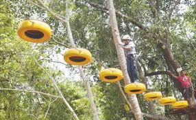 eco activities in sydney sydney adventure activities in goa thrillophilia
