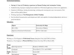 manual testing sample resume sensational design dice resume 15 resume format in word 2007 download dice resume