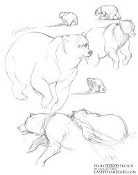 drawn polar bear running bear pencil and in color drawn polar