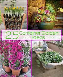 Container Gardening Ideas 25 Container Garden Ideas The Scrap Shoppe